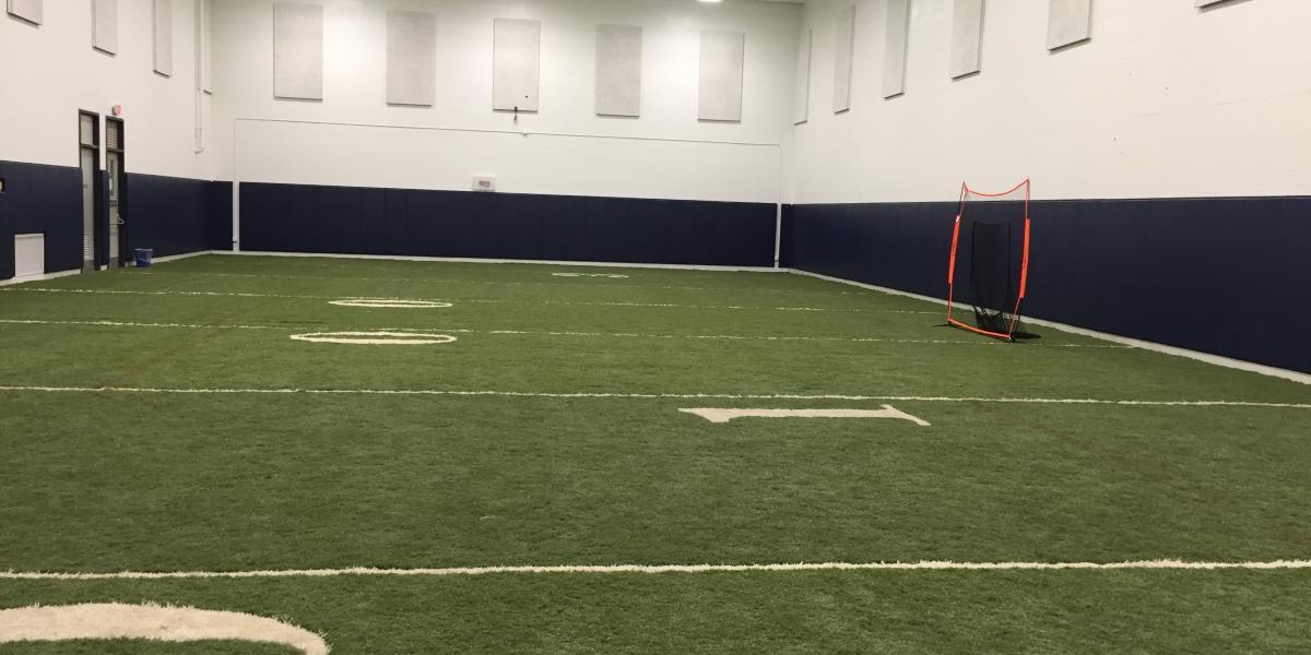 Indoor Field Turf